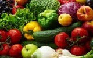 蔬东坡付功卫:餐饮食材O2O的五大黄金法则