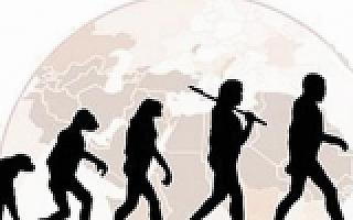 支付宝的进化论,关系链+场景将带来一个全新巨物