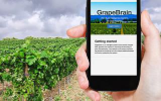 """""""互联网+""""赋能于农: 现状及展望"""