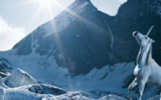 北极光邓锋:资本寒冬真的存在么?未来五年创投趋势要看这三大主题