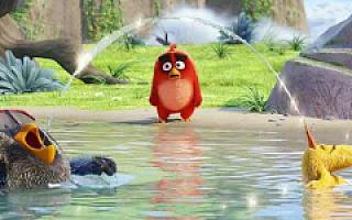 愤怒的小鸟终于开心了 游戏IP化已经成赚钱新模式