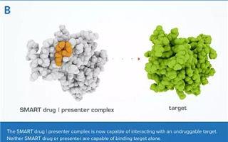 """GSK新合作:靶向""""不可成药""""蛋白"""