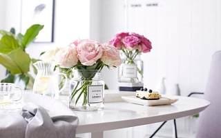 资本助力鲜花市场升级 日常鲜花能否改写鲜花电商历史?