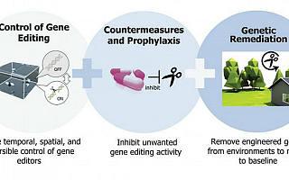 DARPA投资6500万美元用于开发基因编辑技术,欲研发高分辨率神经植入物