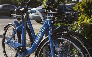 禁止车身广告后,共享单车靠什么盈利?