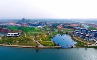 截至5月底 天府新区自贸试验区新设企业4564户