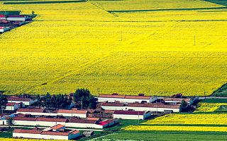 [海外政策]美国新版《农业法案》加持双创,贷款/补贴农村孵化空间/双创活动
