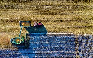 """[全球快讯]印度政府:2022年""""国家在线农业市场""""覆盖全国,农民收入翻番"""