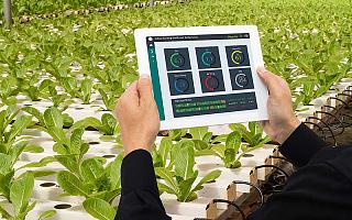 [海外政策]新西蘭成立農村創新實驗室,用數字技術推動農業創新