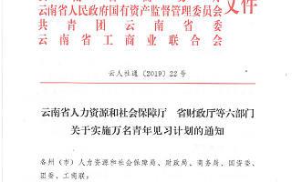 《云南省人力资源和社会保障厅 省财政厅等六部门关于实施万名青年见习计划的通知》   政策解读