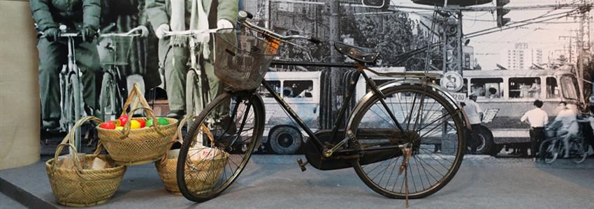 共享单车沦陷,自行车行业龙头也无法幸免