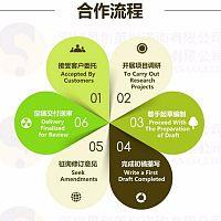 深圳网约车项目融资商业计划书