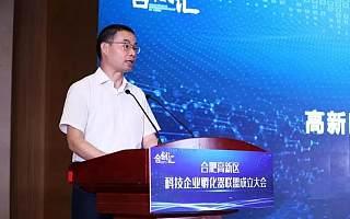 合肥高新区科技企业孵化器联盟成立大会成功举行