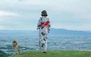 全球旅行摄影品牌路图完成5000万元A轮融资,紫牛基金领投