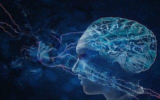 2019世界人工智能大会预计将有7万名专业观众参会、20万人次观展