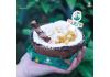 【活动】网红椰子碗加盟_送开店大礼包