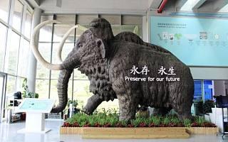 易简胡衍军、海辰出国张双虎出任未来企业家俱乐部广州深圳合伙人