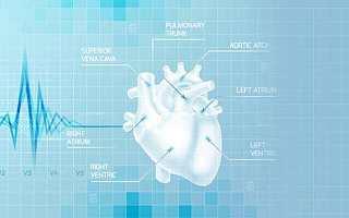 沛嘉医疗完成1亿美元C轮融资,将全力打造心脑血管介入平台