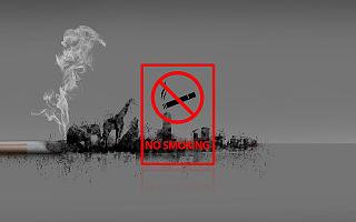 国家烟草专卖局、国家市场监督管理总局:互联网平台全面禁售电子烟!