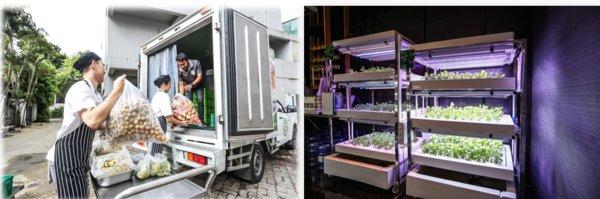 从左至右:曼谷皇后公园万豪侯爵酒店向泰国营养学者基金会(SOS)网络捐赠食物;曼谷皇后公园万豪侯爵酒店的水培菜园