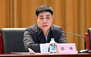 工信部总工程师张峰:加快推进区块链技术产业创新发展