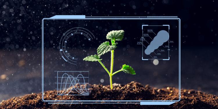 创头条助力新农业,全国新农民新技术双创博览会举行