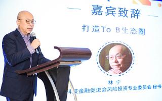 """中国风投委秘书长林宁:""""赚大钱""""时代已经过去,To B企业要精细化运营"""