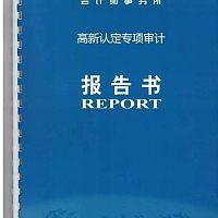 高新技术企业认定专项审计报告