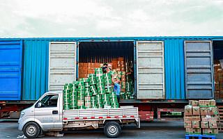 海南女工高温天戴口罩抢运应季水果:一定要用阿里菜鸟绿色通道运出去