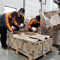 天猫国际联合海外商家募集安心裤和卫生棉,捐助湖北8家医院