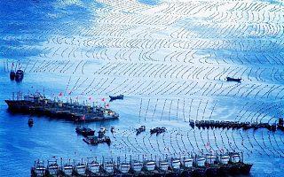 推进海上安全治理现代化,2020数字中国创新大赛助力智慧海洋建设