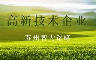 苏州企业服务公司-高企材料主要情况表填写内容三-<font>政府</font>补贴高