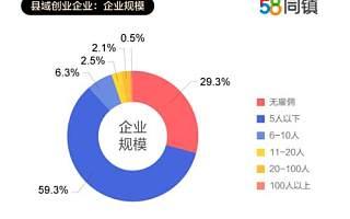 58同镇联合清华发布《县域创业报告》:生存型创业占多数,银行贷款是创业资金主要来源