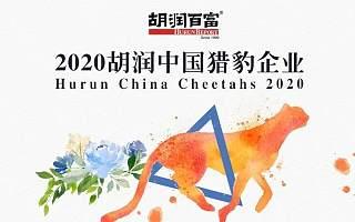 """极米、咕咚!天府软件园这两家企业上榜""""2020胡润中国猎豹企业"""""""
