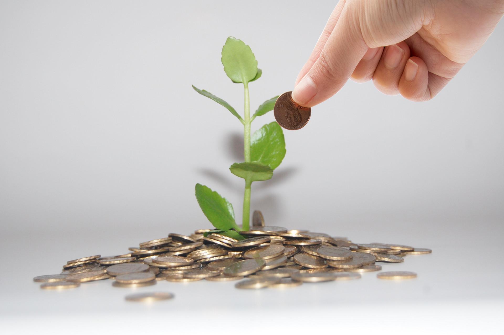 摄图网_500544715_banner_投资升值增长金融(企业商用).jpg