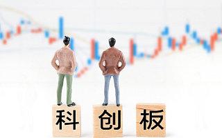 47家科创板公司预告上半年业绩,4家净利润增幅超100%