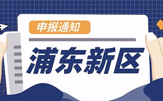 2020浦东新区建设知识产权运营服务体系专项资金,最高资助600万