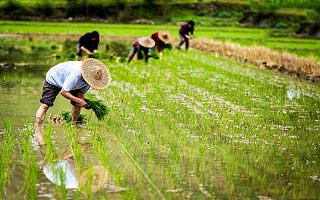 农业农村部:全国新农民新业态创业创新大会9月22-24日在南京召开