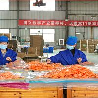 全球最大的小商品产业带义乌,全力备战天猫双11