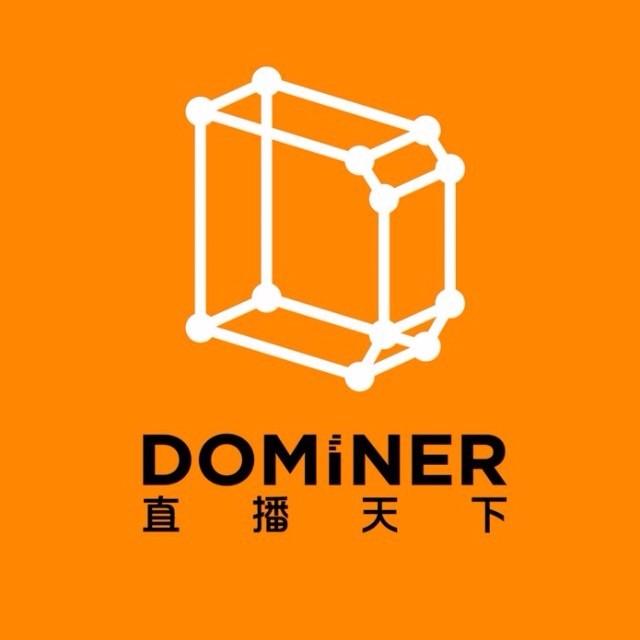 Dominer指数