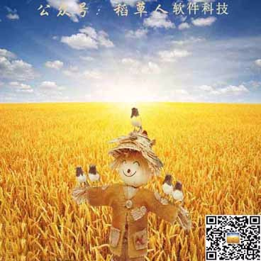 广东省稻草人软件科技有限公司