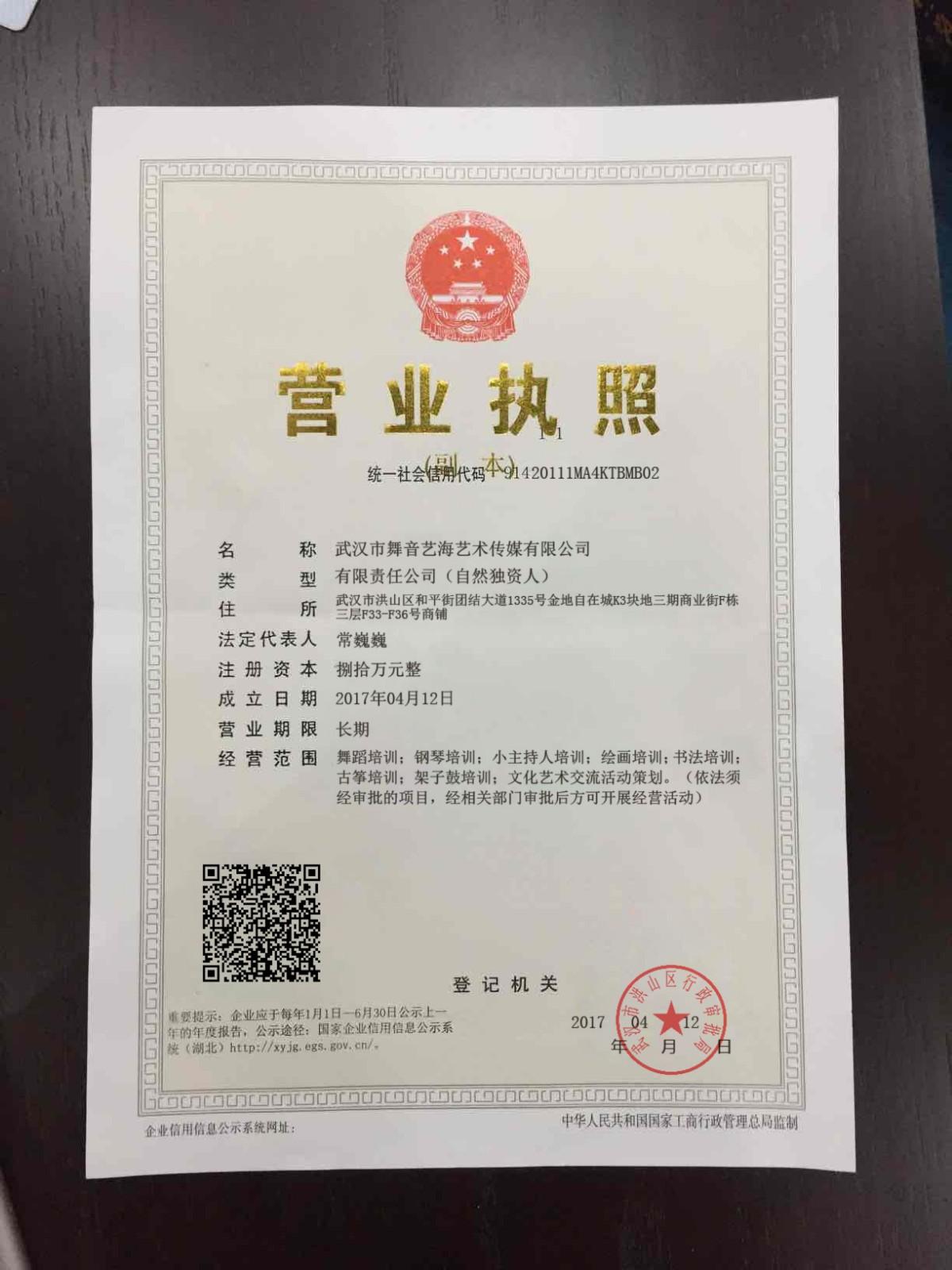 武汉市舞音艺海艺术传媒有限公司