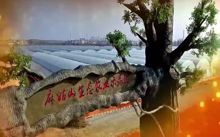 麻姑山生态农业田园综合体