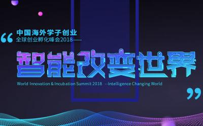 中国海外学子创业 全球创业孵化峰会2018—智能改变世界