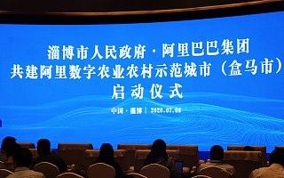 盒马市开建!阿里在淄博打造农产品数字化集运枢纽