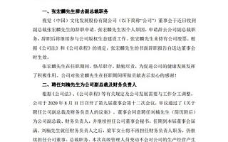 视觉中国副总裁张宏麟辞职:个人原因
