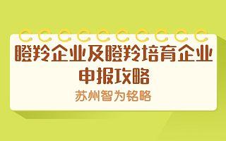高新区瞪羚企业及瞪羚培育企业申报攻略-项目不转包