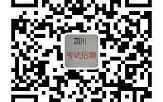 四川天府新区成都片区人民法院(四川自贸试验区)招聘50名编外聘