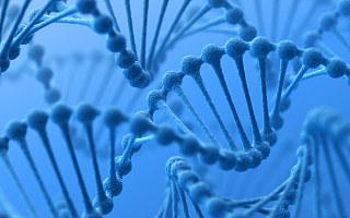 CRISPR基因编辑技术获诺奖,人类的福音还是灾难