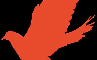 永安集团 成都天府新区党工委副书记刘荣华一行莅临永安集团调研指导